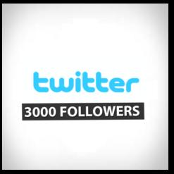 accueil2 twitter3000foll